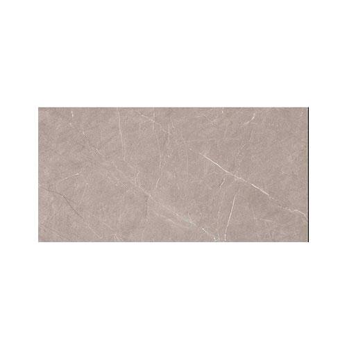 Digital Wall Tile300*600 Delight DK