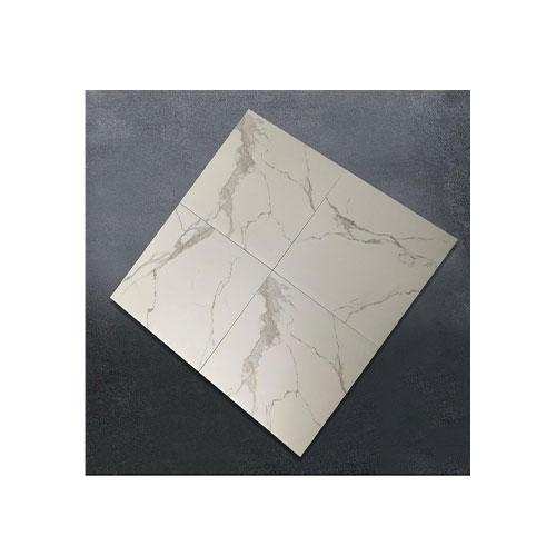 Floor Tile 600*600 - DJH68003