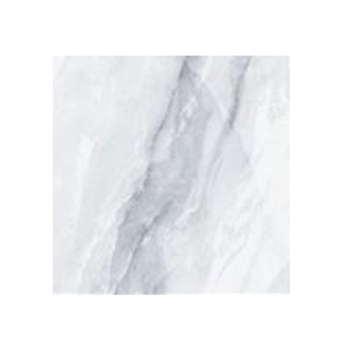 Floor Tile 600*600 - ZN66100 -2 Matt