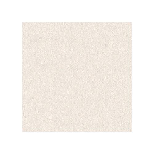 Floor Tile Safari 400*400 Exterior 1631 L